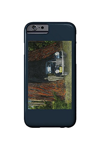 Big Basin State Park, California - View of the Auto Tree (iPhone 6 Cell Phone Case, Slim Barely There) -