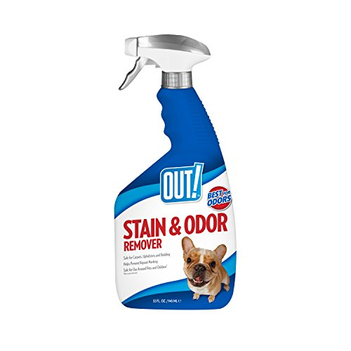 simple-solution-out-extract-oxy-fast-stain-odor-remover-cleaner-for-dogs-32oz