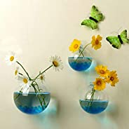 Ball Shape Hanging Plant Flower Glass Vase Terrarium Container Home Decor Wall Sticked Ornaments