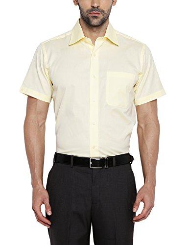 Raymond Men's Business Shirt