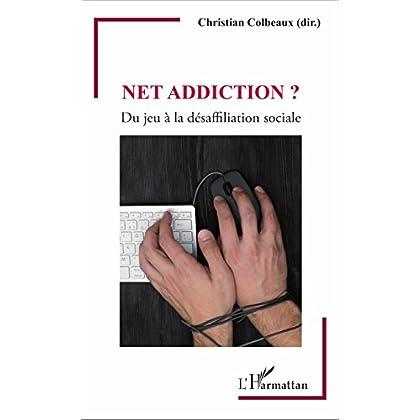 Net addiction ?: Du jeu à la désaffiliation sociale (Psychanalyse et civilisations)