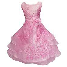 Live It Style It Girls Flower Embroidered Dress Layered Formal Wedding Party Bridesmaid Prom Ball Gown Dresses (5-6 Years, Pink)
