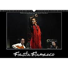 Fiesta Flamenco 2017: Spectacle Estival a Cannes; Le Flamenco Est a L'honneur