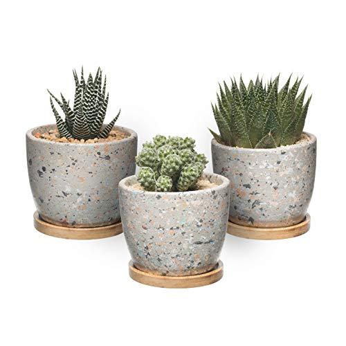 T4U Zement Sukkulenten Kaktus-Topf, Beton-Pflanzgefäß, Blumenkasten, kleiner Tontopf für Pflanzen, Blumen mit Drainage Bambus-Tablett für Heimdekoration, 3 Stück (grau)