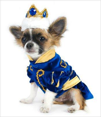 arming Kostüm für Hunde-Größe 6(40,6cm L x 52,1cm-59,1cm G) ()