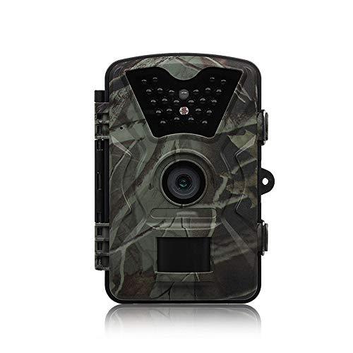 ZYLFN Jagdpfad Camera,1080P 0.3s Trigger Time Wildlife Game Camera 2.4' ' ' LCD IR-LEDs Night Vision bis zu 75ft/2.3m IP66 Spray Water Camera 75 Night Vision