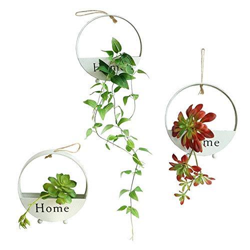 Eisen zum Aufhängen Pflanztöpfe Blumentopf für Innen Pflanzen, draußen, Sukkulenten Töpfe, dekorativen Display Schalen, Blumentopf Container für Moos, Kakteen, Blumen, weiß schwarz 21,6cm Round White -