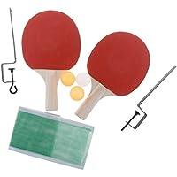 Juego de 2 Raquetas de Ping-Pong + Accesorios de Pelota y Red de Tenis de Mesa - 2 Bolas Amarillas + 1 Bola Blanca, 250x150x5mm
