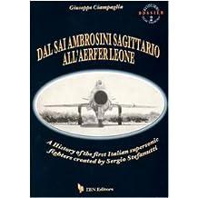 Dal Sai Ambrosini Sagittario all'Aerfer Leone. A history of the first Italian supersonic fighters created by Sergio Stefanutti (Icaro moderno. Professionale e storica)