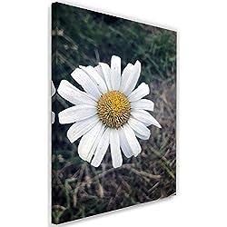 Feeby Imagen Moderno Margarita Impresión Lienzo Naturaleza Flor Blanco 40x60 cm