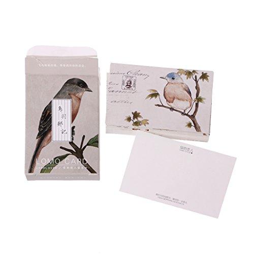 Kalttoy Vintage Stempel Schöne Vogel Mini Grußkarte Grußkarte für Kinder, 28 Stück
