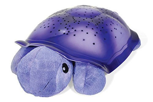 Cloud b 7323-PR Twilight Turtle, violett