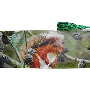Lesezeichen Schildkr/öte Ozean 15,5 cm Design Bookmarks mit Kordel Deko GG 5292