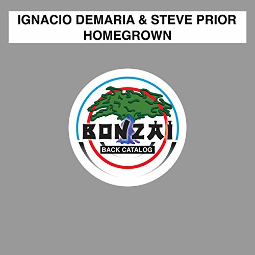 Homegrown (The Second & Joe Fisher Remix)