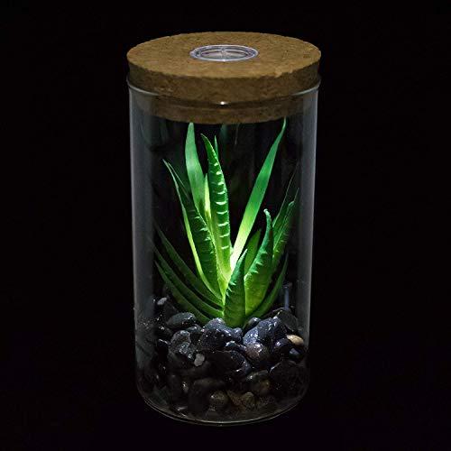 Künstliche Sukkulenten - Clear Crystal Ball Terrarium Pflanzen - Weiß Licht LED Cork Design - Gefälschte Pflanze Faux Cactus Geschenk Topf Bonsai Desktop dekor für Schlafzimmer Studie & Wohnzimmer