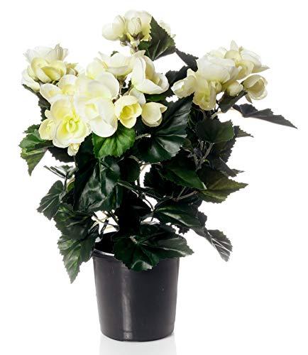 artfleur - künstliche Begonie Schiefblatt 40 cm Blühpflanze Kunstpflanze Topfpflanze