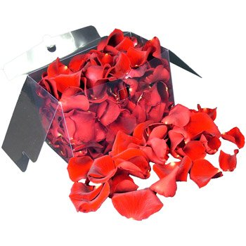 1 Jug (2 litres) of fresh RED rose petals perfect for weddings and confetti