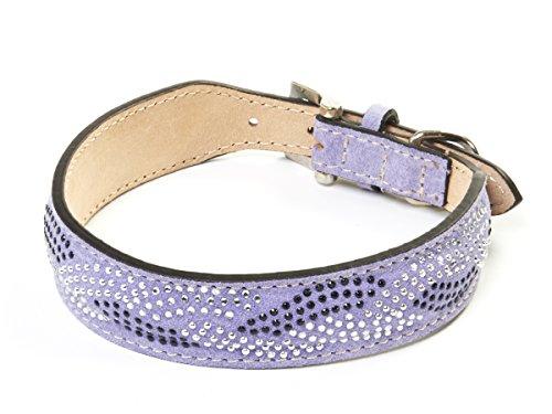 da-vinci-cecilia-suede-greyhound-perro-collar-con-brillantes-30-cm-color-morado