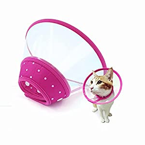 In hand Adjustable Recovery Cat Cone Dog Cone Collar Clear Padded ECollar with Breathable Soft Edge Plastic Soft Cone Designed for Cats and Puppies