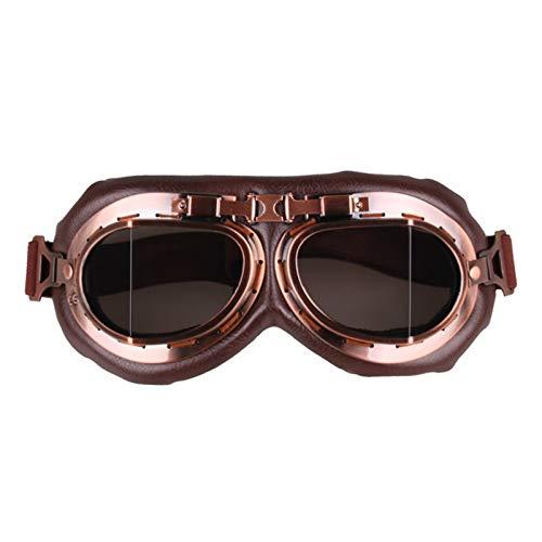 Aienid Fahrradbrille Winter Grey Schutzbrille Winddichter Augenschutz Size:19X8.2CM