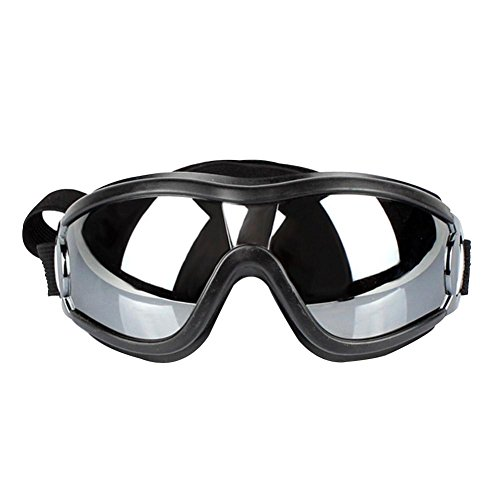 quzser Colorful Pro Glasses Hundebedarf Goggle Windproof Sun-Beweis UV-beständig Hundegläser