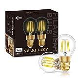 Smart LED Glühbirnen, DORESshop E27 8W WiFi Glühbirne, Remote Control Voice Steuerung durch Alexa, Google Assistant, IFTTT, Siri, Warmweiß 2700K, A60 Vintage Edison-Birne, 2Pack