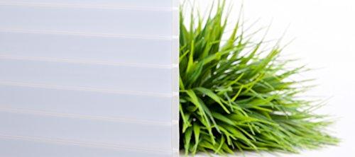 Stegplatte | Hohlkammerplatte | Doppelstegplatte | Material Acrylglas | Breite 980 mm | Stärke 16 mm | Farbe Lichtblau | Temperaturreduzierend