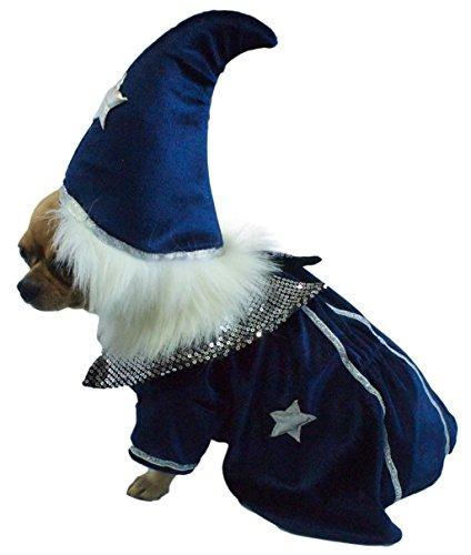 Halloween-Hund Kostüm. Zauberer . Größe 12