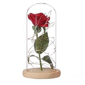 mAjglgE Rosa artificial con cúpula de cristal, base de madera e iluminación para decoración del hogar, vidrio madera plástico, marrón, 22cm x 11.4cm