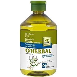 Champú para cabello graso con menta piperita (500 ml)