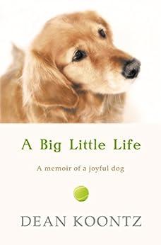 A Big Little Life by [Koontz, Dean]