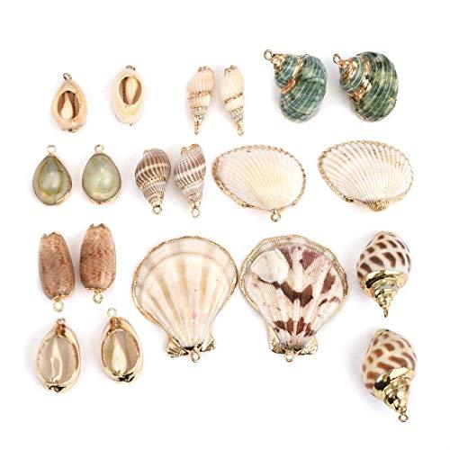 OBSEDE 20 Stück Natürliche Muscheln Anhänger gemischt Muschel Muschel Muschel vergoldet Gold Charms für DIY Schmuck Handwerk Findings