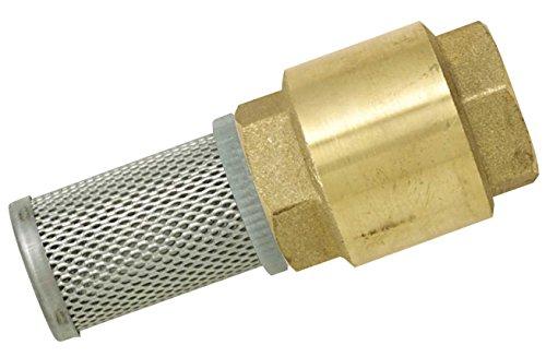 Boutt 2145049 FC50 - Valvola di ritegno in ottone con filtro in acciaio inox, 50 x 60