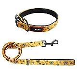 Bunt Hundeleine und Hundehalsband Set Führleine 1.5M Trainingsleine Hundehalsung Einstellbare Hundeband Süße Halskette für Klein Mittlere Große Hunde (M, gelb)