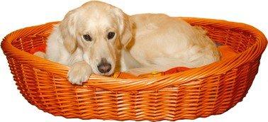 Weidenkorb Hund (Trixie Korb Weide Dunk. 50Cm 28071)