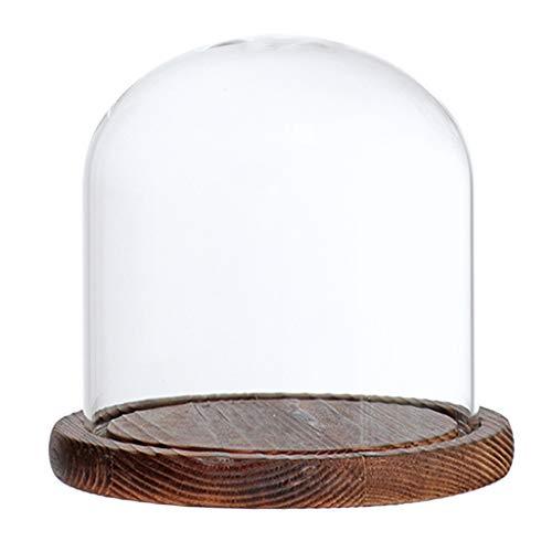 (Homyl Glashaube DIY Deko Glaskuppel Glassturz Glasglocke mit Holz Basen - Braun E)
