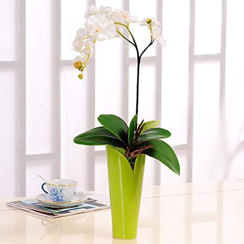 Tackebu orchidea artificiale fiori finti phalaenopsis composizione floreale soggiorno bianco 60 × 30 cm