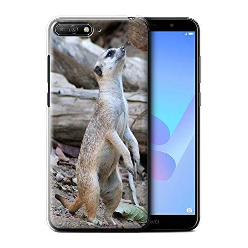 Hülle Für Huawei Y6 (2018) Wilde Tiere Erdmännchen Design Transparent Ultra Dünn Klar Hart Schutz Handyhülle Case