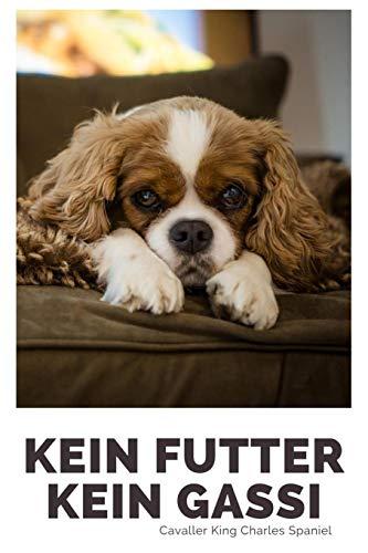 Kein Futter Kein Gassi Cavaller King Charles Spaniel: 120 Seiten liniert in ca. A5 Softcover   Perfekt als Notizbuch für alle Hunde Fans, Hundeliebhaber zum Hundetraining (Leine Abzeichen)