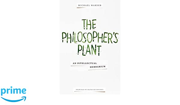Through Vegetal Being Two Philosophical Perspectives Critical Life Studies