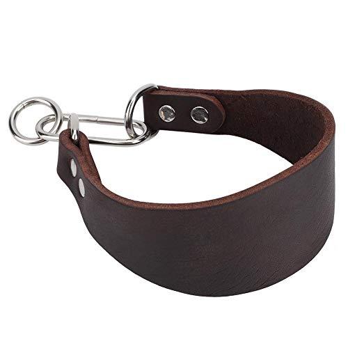Furnoor Durable Portable Widen Pet Collar per Cane Piccolo Levriero Whippet con Rivetto Marrone