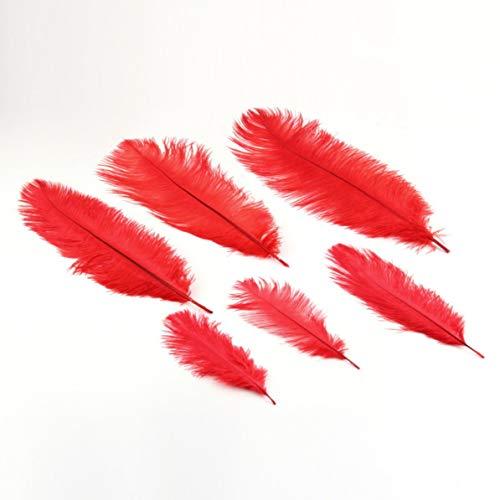 wertige natürliche Straußenfedern passen Weihnachten Hochzeitsdekoration, rot, ()