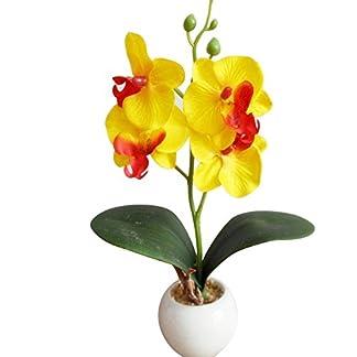 XdiseD9Xsmao Cuatro Cabeza Delicada Natural Orquídea Mariposa Planta Carnosa Bonsai Flor Artificial Decoración del Hogar Agregar Ambiente Al Festival Amarillo
