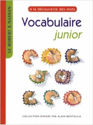 Vocabulaire junior de Annie Dyckmans-Rozinski,Robert Chiss ( 1 juillet 2001 )