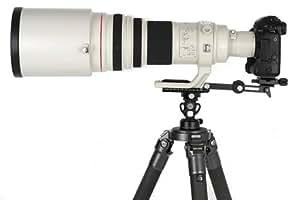 Sunwayfoto Add-on compenser niveau à bulle plaque LP - 76 x 76 mm de diamètre à un trépied et tête