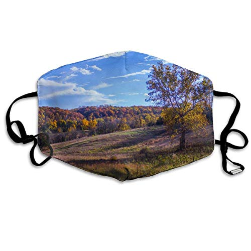 Masken, Masken für Erwachsene, Fall Trees Grass Field Forest Landscape Clear Sky Clouds Nature Cromwell Valley Sycamore Baltimore Anti Dust Face Mouth Cover Mask Protective Breath Healthy Safety - Cloud-schüssel