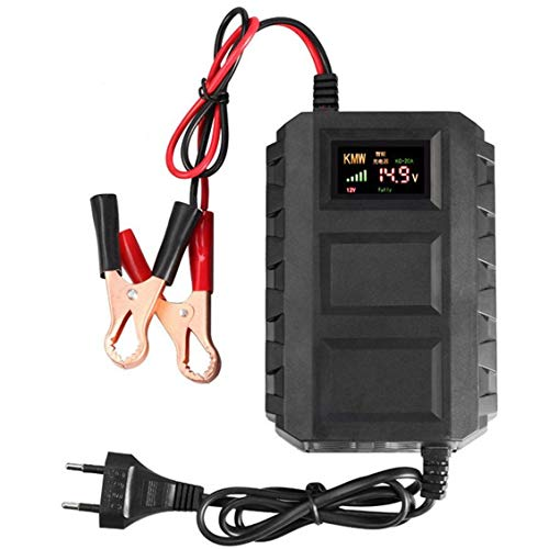 ForceSthrength Caricabatterie Smart 12V Caricabatteria per Auto Caricabatteria al Piombo