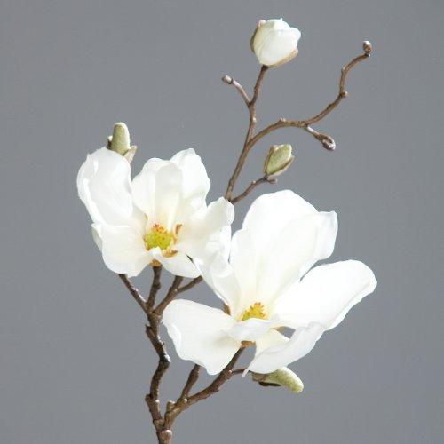 Magnolienzweig Zweig Magnolie Kunstblume creme 50 cm