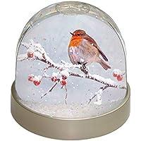 Advanta Robin Schneekugel Weihnachten Geschenk, mehrfarbig, 9,2x 9,2x 8cm