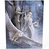 Fantastisches Anne Stokes Design - Midnight Messenger - Ein gotischer Druide / Engel mit weißen Snowy Eulen - Leinwand Bild auf Bild-Wand-Plakette / Wand Kunst
